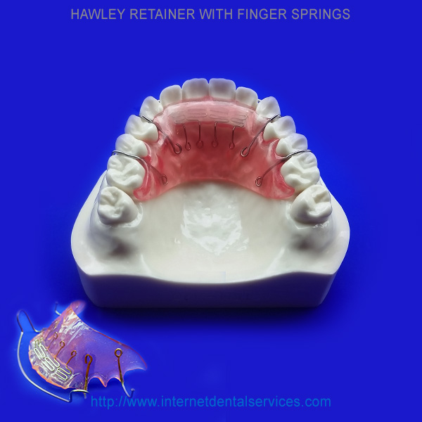 upper-hawley-retainer-w-finger-springs